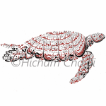Arabic Calligraphy - Turtle